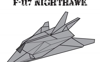 Stealth Aircraft Origami Review